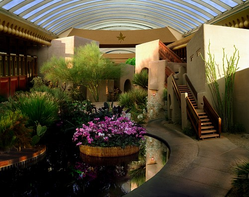 Exhibition: Oliver Wasow: Exteriors and Interiors, Work: Orchid show, Boulders Resort, Arizona